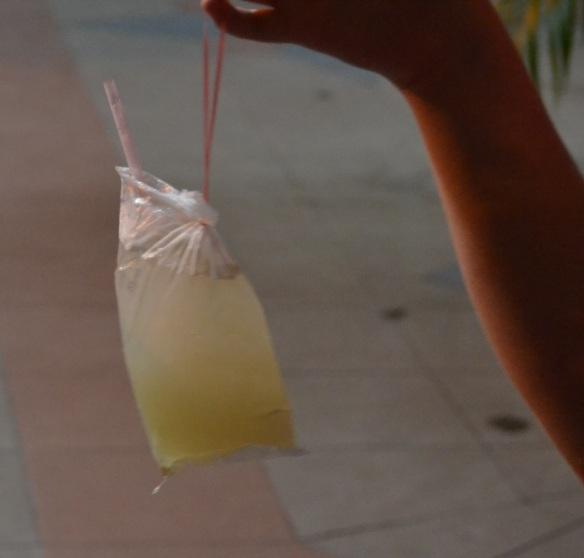 Fruit juice bag 18th Sept 13 (123)